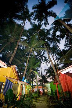 Kate's, Palolem | Palolem Beach, Goa India | Andrew Miller | Flickr