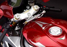 MV Agusta F3 Serie Oro / the jilted rat