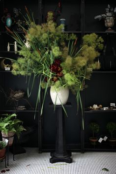 Emily Thompson Flowers | The Garden Edit