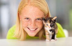 Koci członek rodziny - Deccoria.pl  Kliknij w zdjęcie, aby zobaczyć więcej!