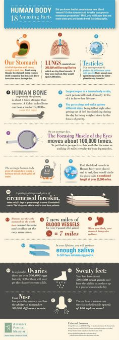 18 fatti sorprendenti sul corpo umanoTesto originale