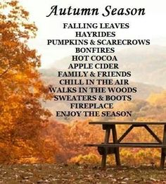 Chill in the air Love this saying.more people should really get out in the woods and enjoy it. Autumn Day, Autumn Leaves, Winter, Autumn Scenes, Seasons Of The Year, Happy Fall Y'all, Walk In The Woods, Fall Harvest, Autumn Inspiration