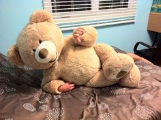 Teddy Bear Costume, Giant Teddy Bear, Yiff Furry, Fun Songs, Disney Plus, Halloween Costume Contest, Fursuit, Mouse Ears, Costume