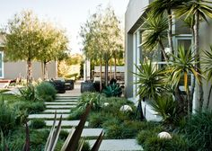 Residence - modern - exterior - los angeles - MTLA- Mark Tessier Landscape Architecture - Another! Modern Landscape Design, Modern Garden Design, Garden Landscape Design, Modern Landscaping, Contemporary Landscape, Front Yard Landscaping, Landscape Architecture, Landscaping Ideas, Contemporary Design