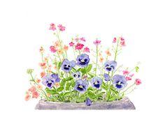 Pansies Watercolor - Spring, Summer, Garden, Purple Blue Flowers - 8 x 10 Print of Watercolour Painting. $20.00, via Etsy.