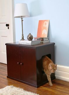 Cat house combined with a desk. With this kind of thing, even if you didn't have any skeleton in your closet, now you definitely will!