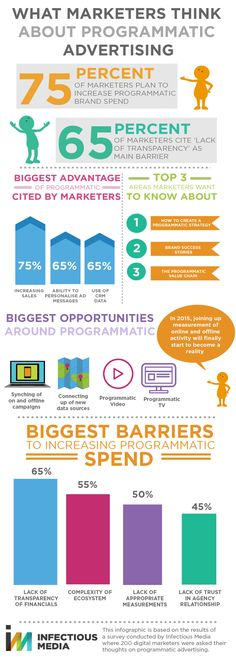 What Marketers Really Think About Programmatic Advertising Infographic