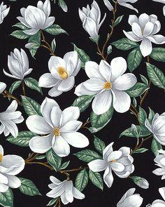 Blossom Vine - Magnolia Spring - Black