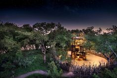 Die 5 schönsten Schlafplätze der Welt - The Chill Report Kruger National Park, National Parks, Beste Hotels, Private Games, Sustainable Tourism, Game Reserve, Nature Reserve, Hotel Spa, Us Travel
