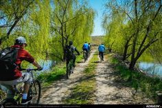 Trasee cu bicicleta MTB XC - Traseu MTB Bucuresti - Branesti - Islaz - Belciugatele - Candeasca (Cu bicicleta la tara - Balta Belciugatele) de Andrei Vocurek