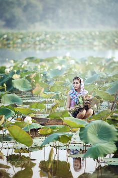 Lotus field, Thailan