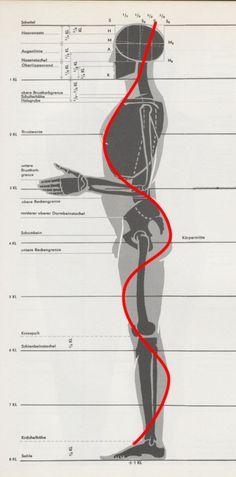 [Re]【人体比例、结构分析】