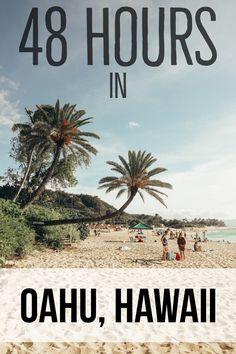 Best Places to Visit in Oahu | Things to see in Oahu | Hawaii | Honolulu | Royal Hawaiian| Bustling city life| Laid back beach |Waikiki Beach | Makapu'u Point | Koko Head Stairs |  Turtle Beach | Hawaiian Sea Turtles | Travel | Travel Photography | Bubbly Moments