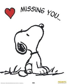 snoopy love #snoopy #charliebrown