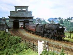46138 The London Irish Rifleman. Diesel Locomotive, Steam Locomotive, Steam Railway, Train Art, British Rail, Old Trains, Train Engines, Steam Engine, Model Trains