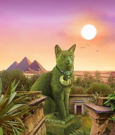 The Topiary Cat in Egypt - Richard Saunders Silly Cats, Cute Cats, Beautiful Cats, Beautiful Gardens, Earth Drawings, Topiary Garden, Cat Statue, Cat Garden, Cat Colors