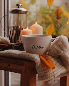 Herbst Bucket List, Autumn Cozy, Autumn Fall, Autumn Tea, Autumn Nature, Autumn Leaves, Autumn Aesthetic, Cozy Aesthetic, Aesthetic Outfit