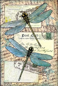 mail art with dragonfly Art Journal Pages, Art Journals, Junk Journal, 4x6 Postcard, Postcard Paper, Bd Art, Art Postal, Images Vintage, Vintage Postcards