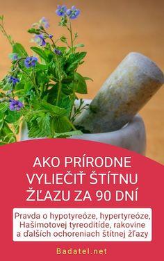 e-kniha: Ako prírodne vyliečiť štítnu žľazu za 90 dní Artemisia Annua, Health Fitness, Food, Essen, Meals, Fitness, Yemek, Eten, Health And Fitness