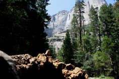 Il sogno americano: Yosemite Park