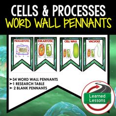Cells Word Wall 46 Pennants (Life Science Word Wall)VISIT MY STORE AND FOLLOW TO GET UPDATES WHEN NEW RESOURCES ARE ADDED This is a WORD WALL set that has 34 words included.  Buy now and save $$$.   Includes 2 to a page banner pennant word wall.  Print two or four to a page, cut, and decorate your room!  2 blanksfor each unit have been included so you can decorate and label your board with the same background theme.  34 Words with 10 different blank backgrounds for you to decorate your room…