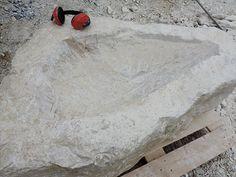 Ein Brunnen entsteht: Steinbrocken Code 110 Fish, Stones, Pisces