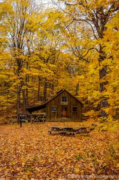 Camping World Las Vegas Refferal: 3026641340 Camping World, Camping Life, Egyptian Home Decor, Autumn Scenes, Tiny House Cabin, Belle Villa, Forest House, Parc National, Cabins And Cottages