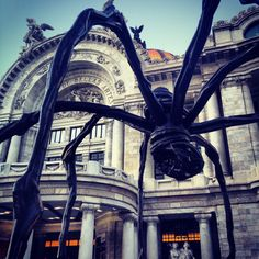 Araña en Bellas Artes