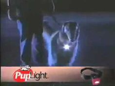 Pup Light collar. Watch and learn how you can keep your pet safe at night.