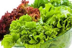 Lettuce is neutral and bland. It invigorates Chi (energy), removes stagnation, reduces swelling, softens hardening, and is mild in action. It relieves skin lesions, abdominal pain, breast abscesses, and postpartum pain. Reference: The Tao of nutrition, Maoshing Ni - Cathy McNease - Sevenstar, Communications - 1987