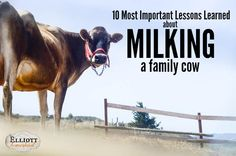 Some lessons are easily learned, some not as much. Here's my top 10 most important lessons learned about milking a family cow.