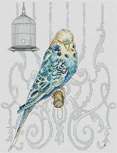 maia Bird in Cage Celtic Cross Stitch, Cross Stitch Love, Cross Stitch Pictures, Cross Stitch Borders, Cross Stitch Alphabet, Cross Stitch Animals, Cross Stitch Flowers, Cross Stitch Charts, Cross Stitch Designs