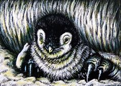 Bird ACEO ORIGINAL Scratchboard Art Card PENGUIN BABY Chick Animal Wildlife MMM #Miniature
