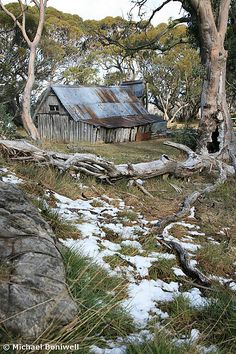 Wallace HutBACK   Falls Creek, Victoria, Australia    PREVIOUS <     Wallace's Hut near Falls Creek is the oldest hut in Victoria's Alpine National Park. It was built by the three Wallace brothers, Arthur, William and Stewart, who arrived as small boys in Melbourne from Ireland in 1869. Now used by hikers and cross country skiers for emergency shelter, it's not exactly the height of luxury.