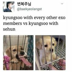 Kyungsoo with the rest of EXO VS him with Sehun