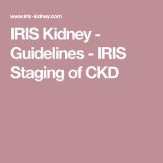 IRIS Kidney - Guidelines - IRIS Staging of CKD
