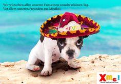 Feliz día a todos les desea Xplícame. www.xplicame.com