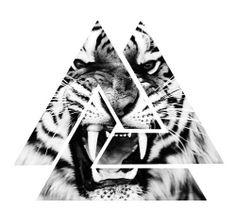 POLYHEAD Tiger Tattoo Design, Geometric Tattoo Design, Tattoo Design Drawings, Tattoo Sketches, Tattoo Designs, Type Tattoo, Arm Band Tattoo, Body Art Tattoos, Small Tattoos