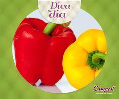 Inclua pimentão na sua dieta. Ele ajuda o sistema cardiovascular, pois é antioxidante e tem propriedades anti-inflamatórias! #dicaCampesí