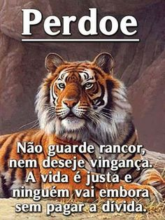 SIGNOS MAIS OS MISTÉRIOS DA VIDA  生命のより多くの謎: MEU VERBO - My verb - 내 동사 L Quotes, Beauty Quotes, Graphic Design Software, Magic Words, Morning Images, Feelings, Instagram, Animals, Facebook 1