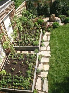 25 Amazing Small Vegetable Garden Design Ideas For Home Backyard Garden Take into consideration the type of vegetables you want to grow, soil conditions and available sunlight. There is a vegetable garden design for every space regardless of size. Backyard Vegetable Gardens, Backyard Garden Design, Small Garden Design, Backyard Landscaping, Outdoor Gardens, Garden Soil, Vegetable Garden Layouts, Home Vegetable Garden Design, Small Garden Layout