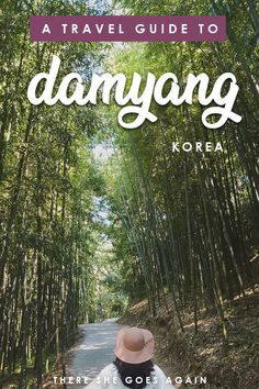 "Damyang is one of the best places to visit in South Korea! With is stunning bamboo forest and quirky ""French"" village, here are the top things to do! #damyang #damyangtravel #koreatravel #koreaoffthebeatenpath #koreatravel #southkorea #jeollanam"