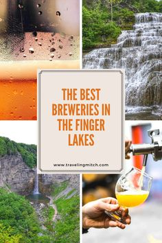 While the New York's Finger Lakes might be best known for its wine, there are some great Finger Lakes breweries. In fact, there's an emerging beer trail in the Finger Lakes, and I've noted 12 breweries in the region that you need to try! finger lakes beer - best breweries finger lakes - finger lakes brewery - breweries on seneca lake - breweries on keuka lake -finger lakes - NY - new york state Usa Travel Guide, Travel Usa, Travel Guides, Travel Tips, Amazing Destinations, Travel Destinations, Places To Travel, Places To Go, Seneca Lake
