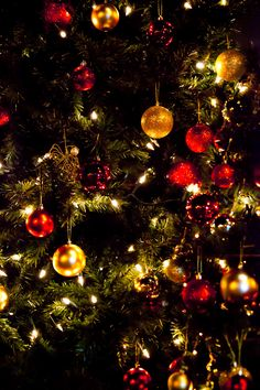 Christmas Tree Wallpaper Royalty Free Stock Photos All Pictures Are For Commercial And