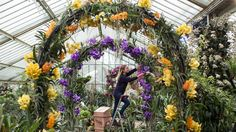 Escape to the tropics with these stunning orchid displays.