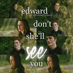 New Moon ~ Edward and Bella Twilight Saga Quotes, Twilight New Moon, Twilight Series, Twilight Movie, Real Vampires, Stephanie Meyers, Twilight Photos, Strong Love, Breaking Dawn