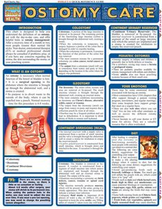 Ostomy Care Guide. This 4-page guide is designed to help the patient and care giver understand the definition of an Ostomy, aid in the day to day care, and offer helpful hints in Ostomy management.