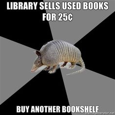 English Major Armadillo. yeah... this is pretty accurate