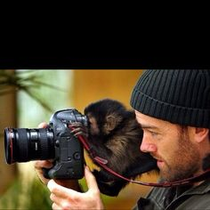 Photographic assistant ?