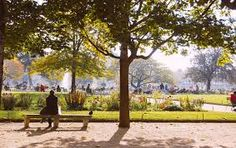 Image result for grassy park with carousel  london